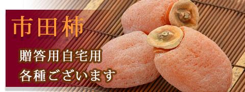 市田柿トップ1月2月