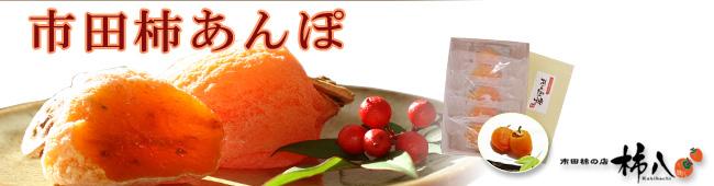 冷凍蔵出し市田柿あんぽのトップ画像