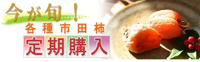 各種市田柿の定期購入イメージ