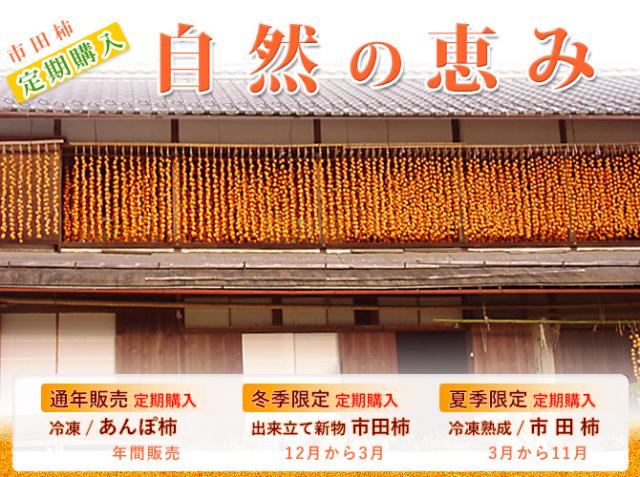 各種市田柿の定期購入