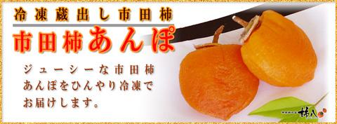 冷凍蔵出し市田柿あんぽ